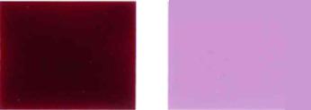 Pigmento-violento-19-Cor
